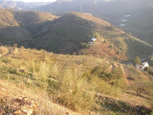 Land in Alora