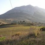 AP734: Cortijo in Valle de Abdalajis