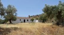 AM110 – Very nice renovated house near El Chorro and the 'Caminito del Rey'.