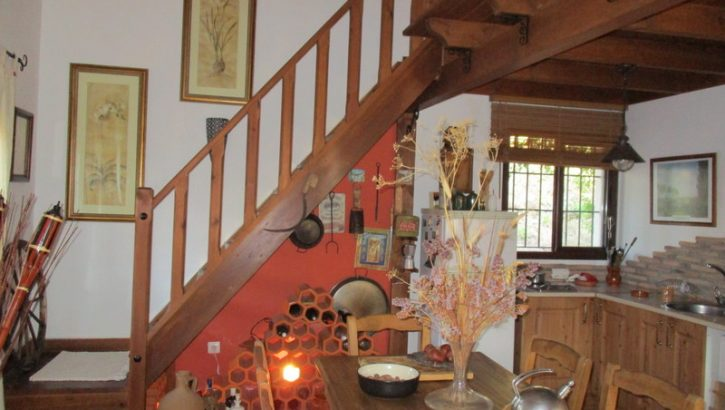 APA119- Enchanting country property in Alora