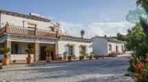 APA138- Villa in Alora