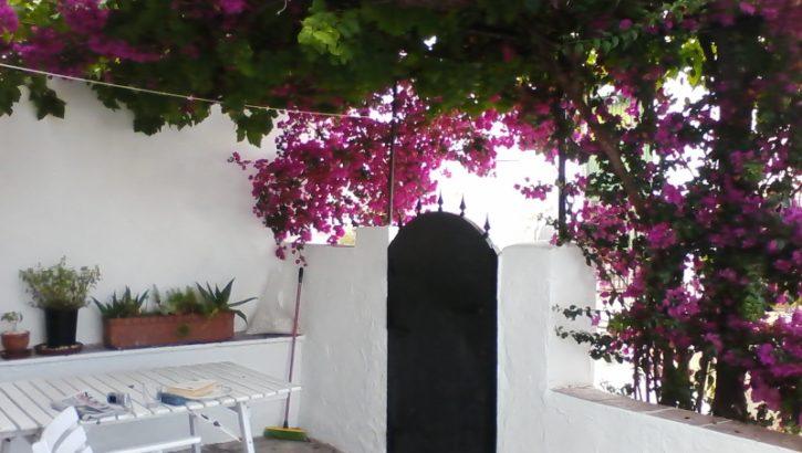 APA185- Town house in Alora