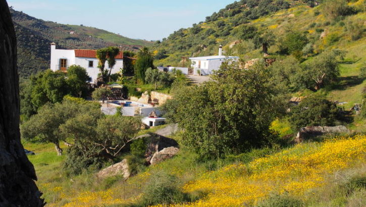 APA189- Charming Andalucian property in Alora