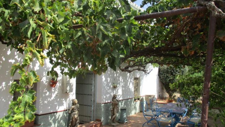 APA227- Traditional Andalucian farmhouse in Alora, Málaga
