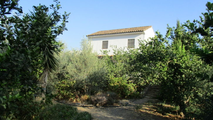 APA228- Country house in Alora