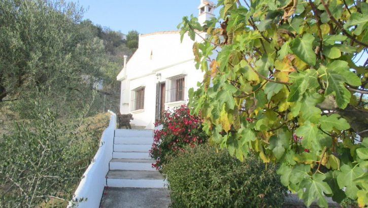 APA317- Charming 3 bedroom country villa in Alora
